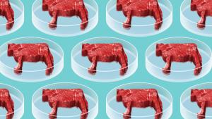 Carne-sintetica